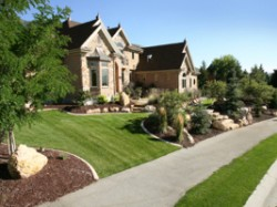 residential-landscaping-front-yard