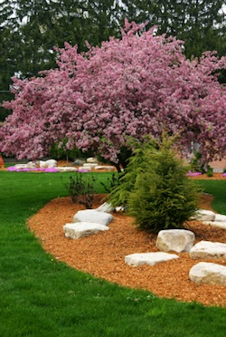 residential bark and mulch delivery and installation services of Grand Rapids Landscape Management